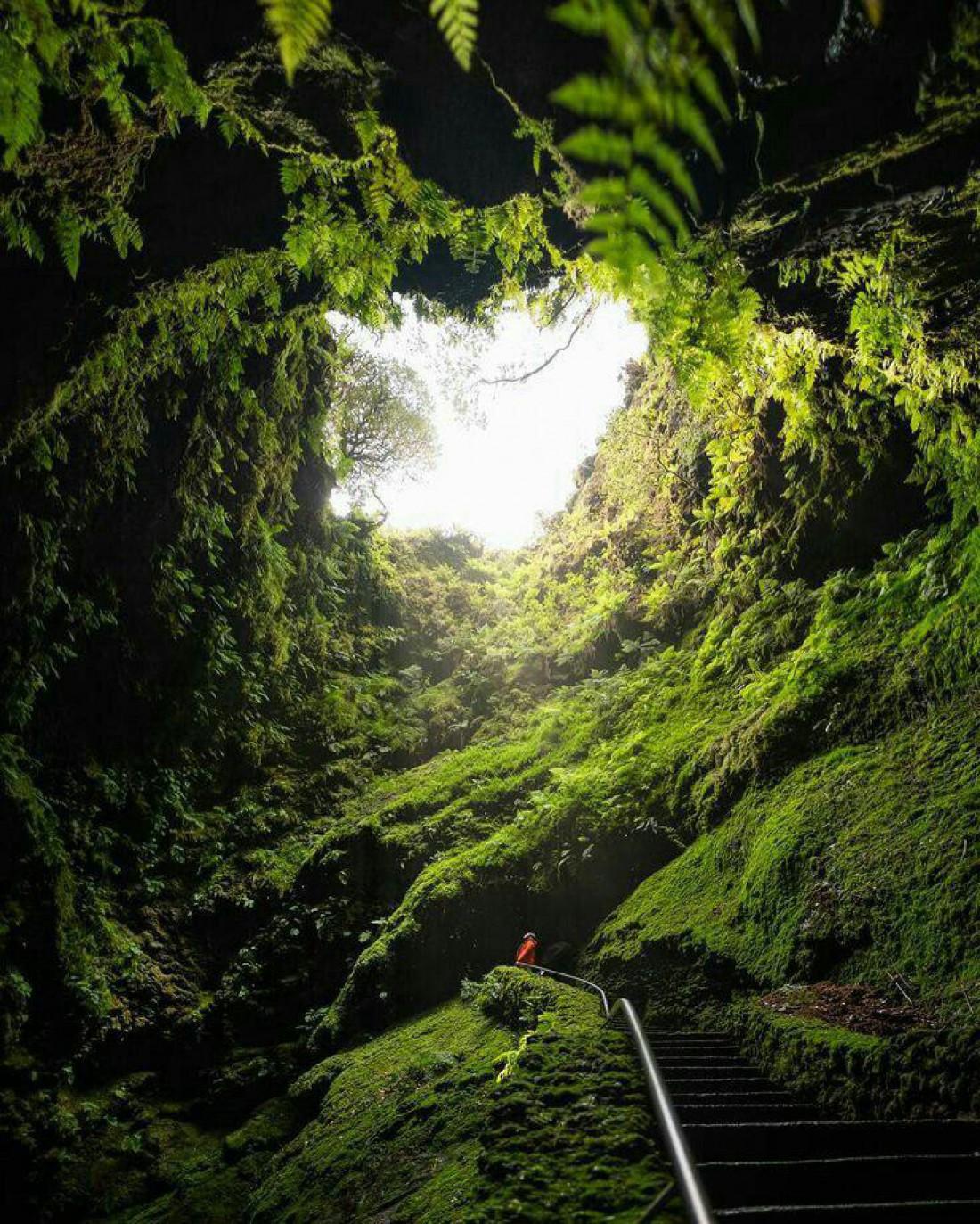 Пещера Алгар ду Карвау