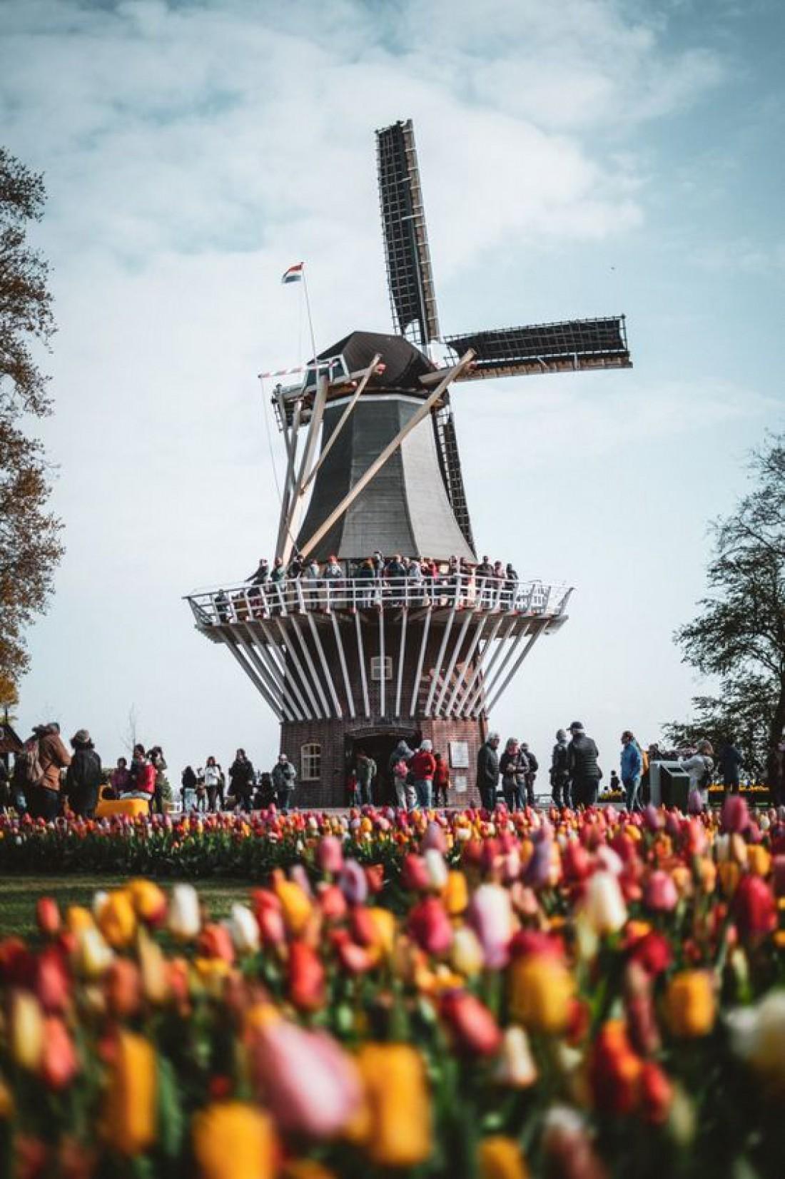 Кекенхоф - великолепный цветочный парк, известный во всём мире