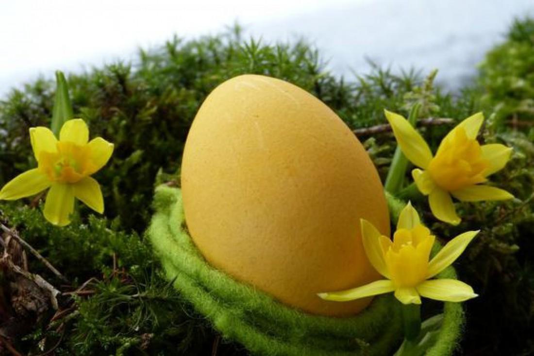 Как красить яйца на Пасху? ТОП-9 натуральных красителей