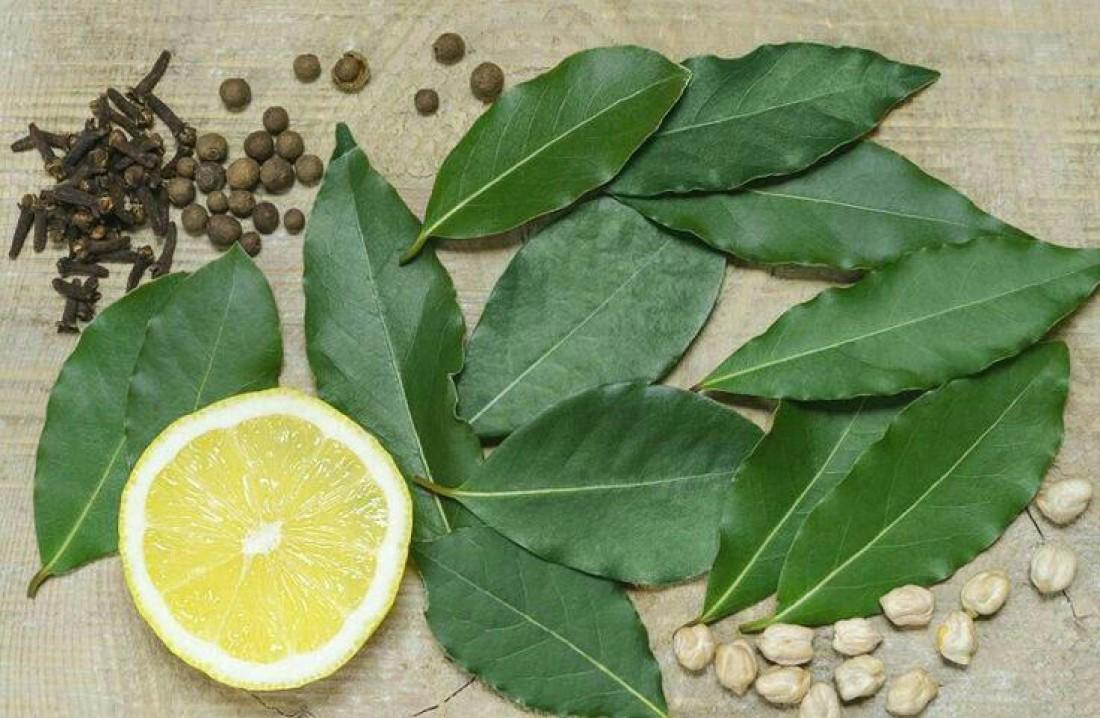 ТОП-10 лечебных свойств лаврового листа