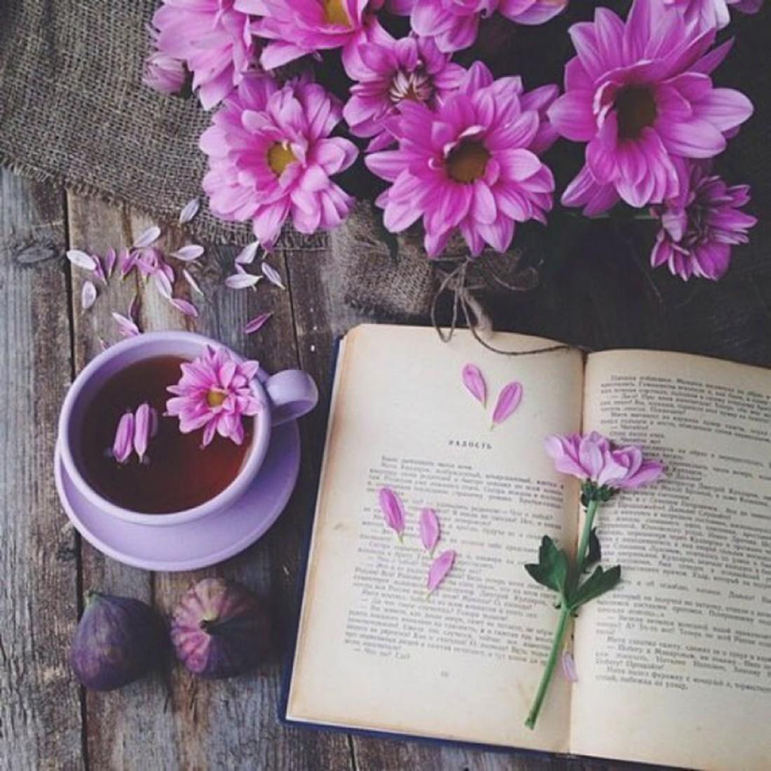 Польза не во многих, но в хороших книгах (Сенека)