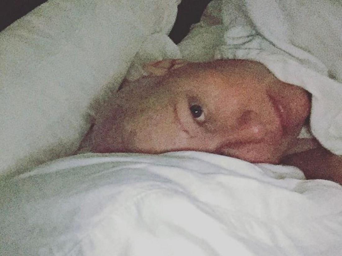 Шэннен Доэрти прошла курс химиотерапии