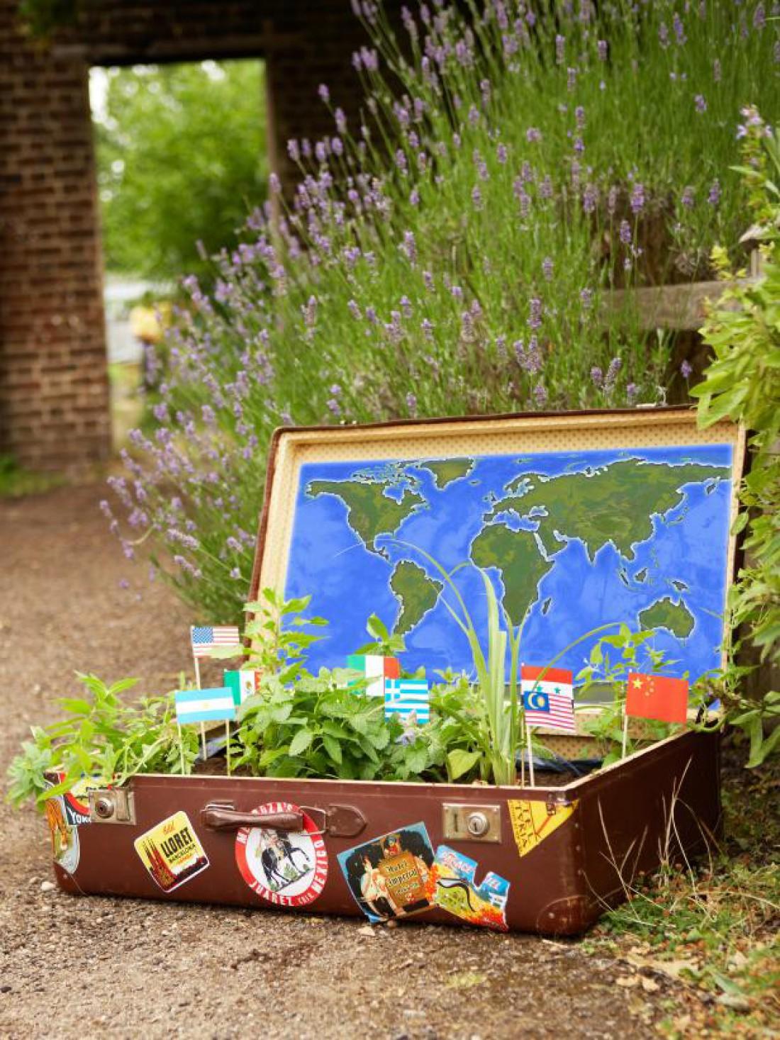 Сад в старом чемодане