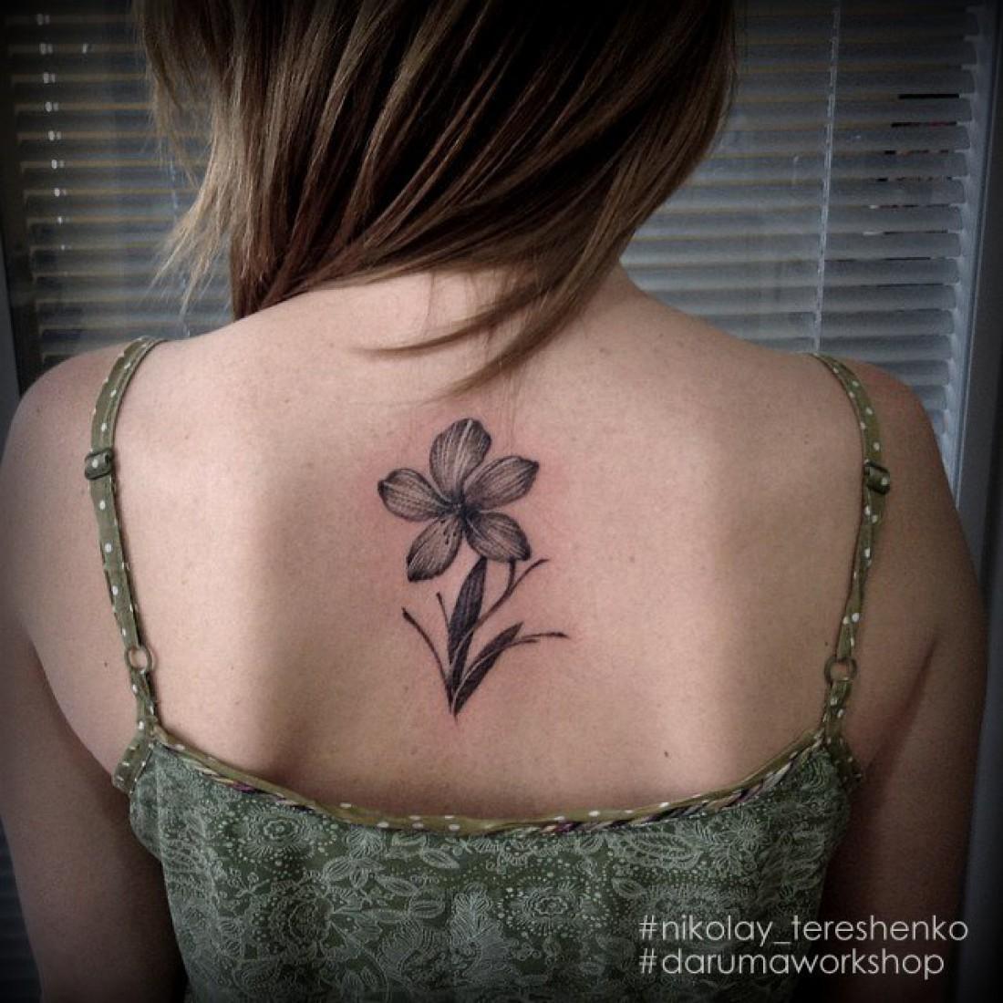 Как ухаживать за татуировкой в период ее заживления