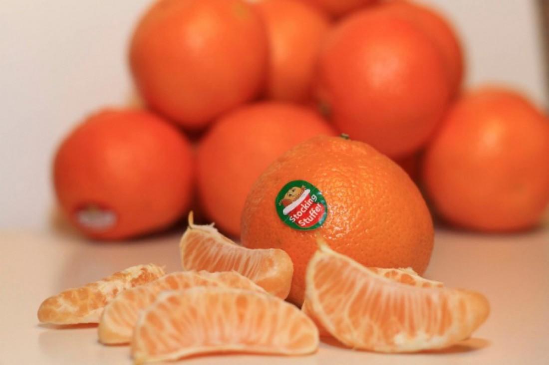 Плод неизвестного происхождения