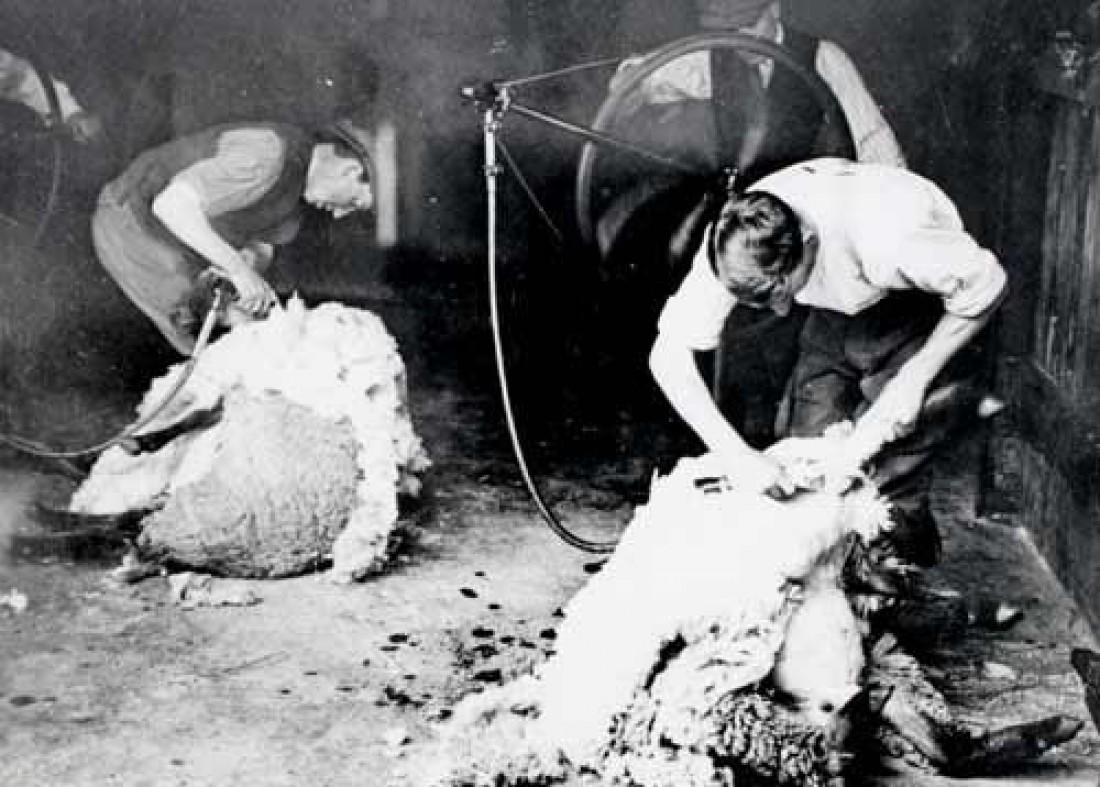 Угги были созданы для того, чтобы облегчить жизнь фермерам