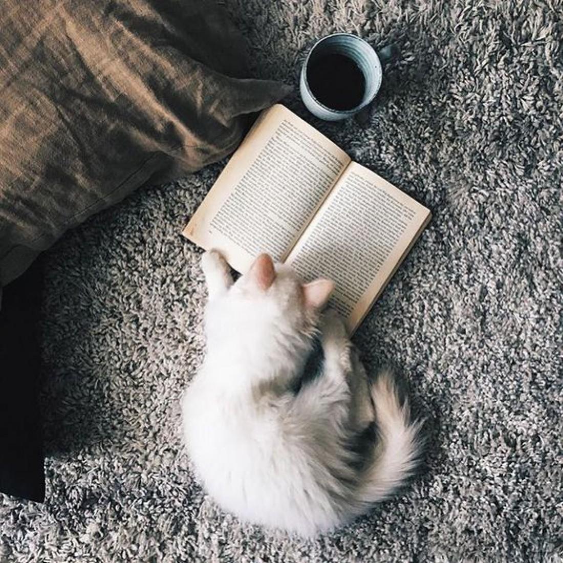 Преимущества книг