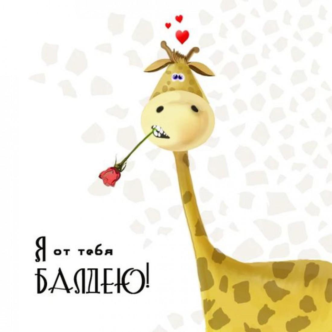 Смешные поздравления на День святого Валентина