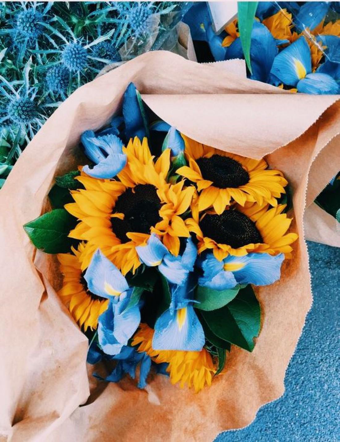 Цветы-талисманы по знаку Зодиака