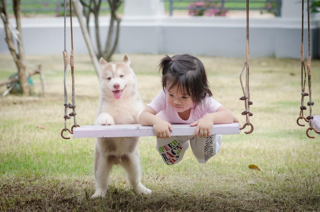 Собака – это верный и преданный друг для ребенка