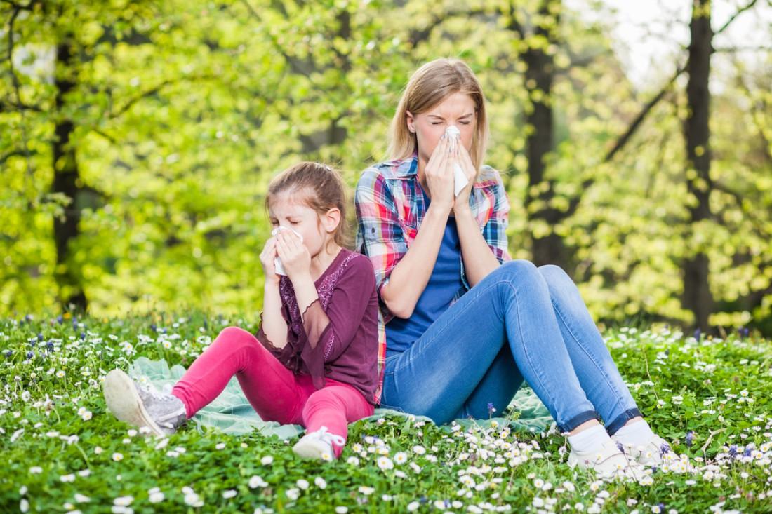 Проверить аллергию за 5 минут