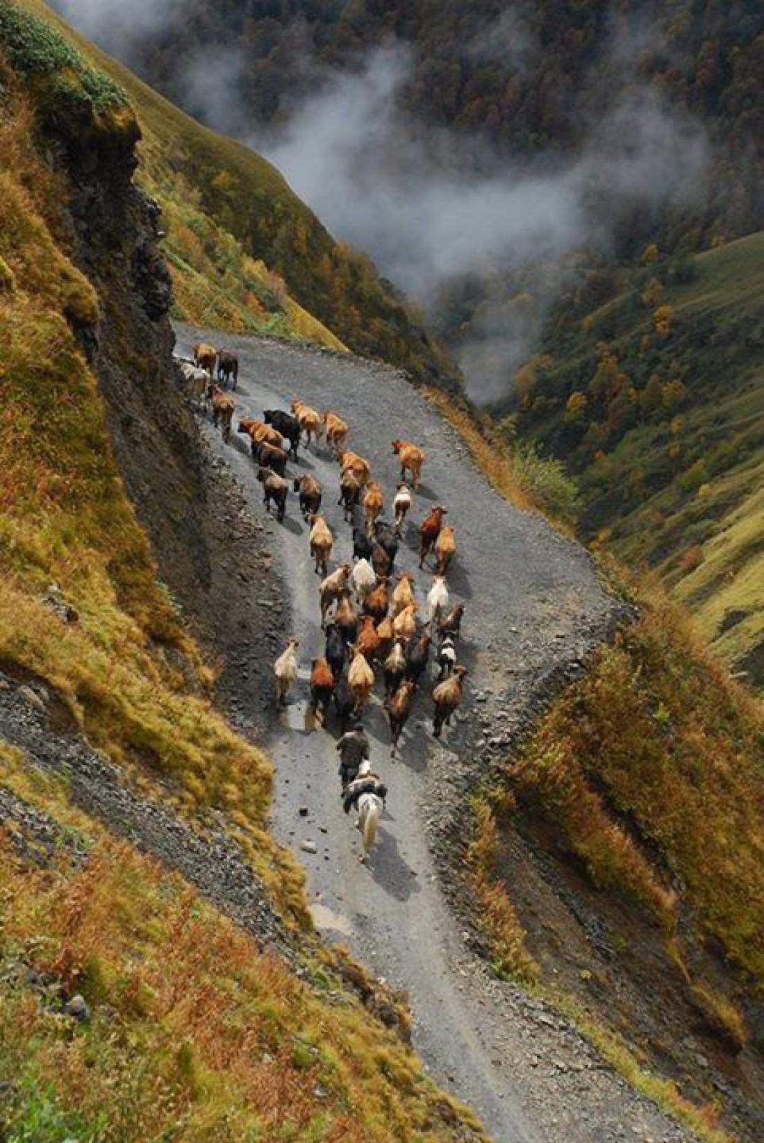 Терпко-сладкая Грузия: Красивейшие места страны