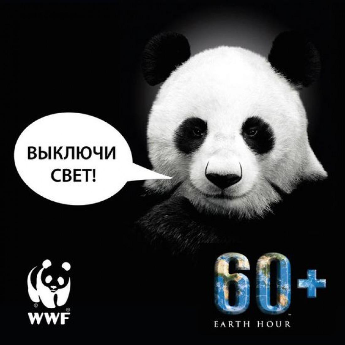 Час Земли 2020: когда по всему миру отключат свет?