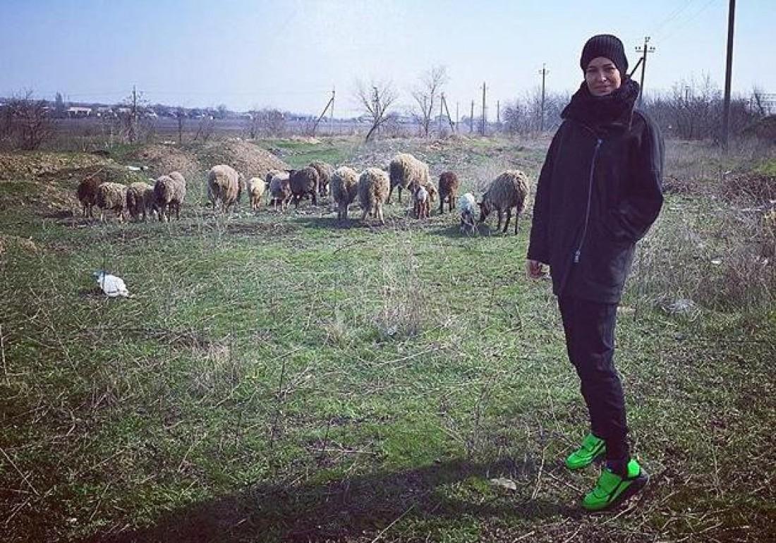 Даша показала фото с овцами