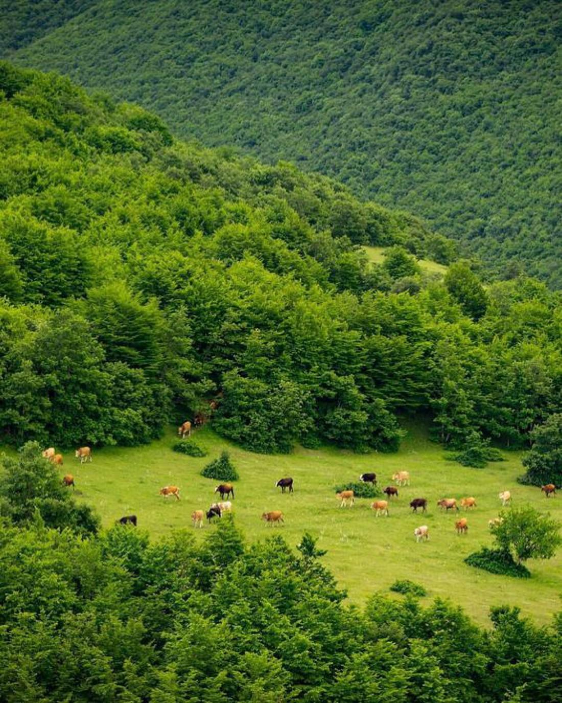 Азербайджан: восточная шкатулка чудес