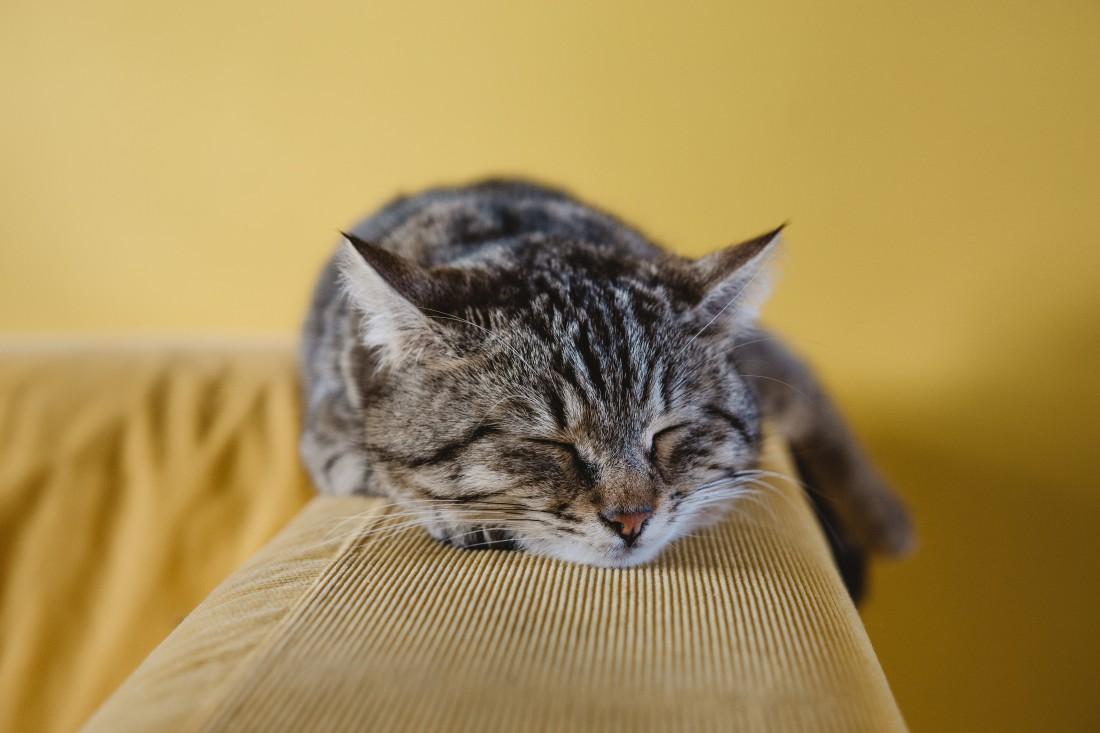 Четыре привычки выходного дня, которые не дают тебе выспаться