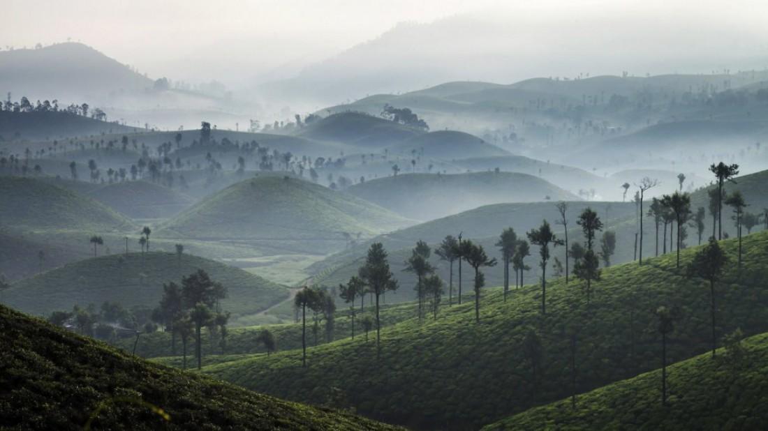 Валпарай, Индия