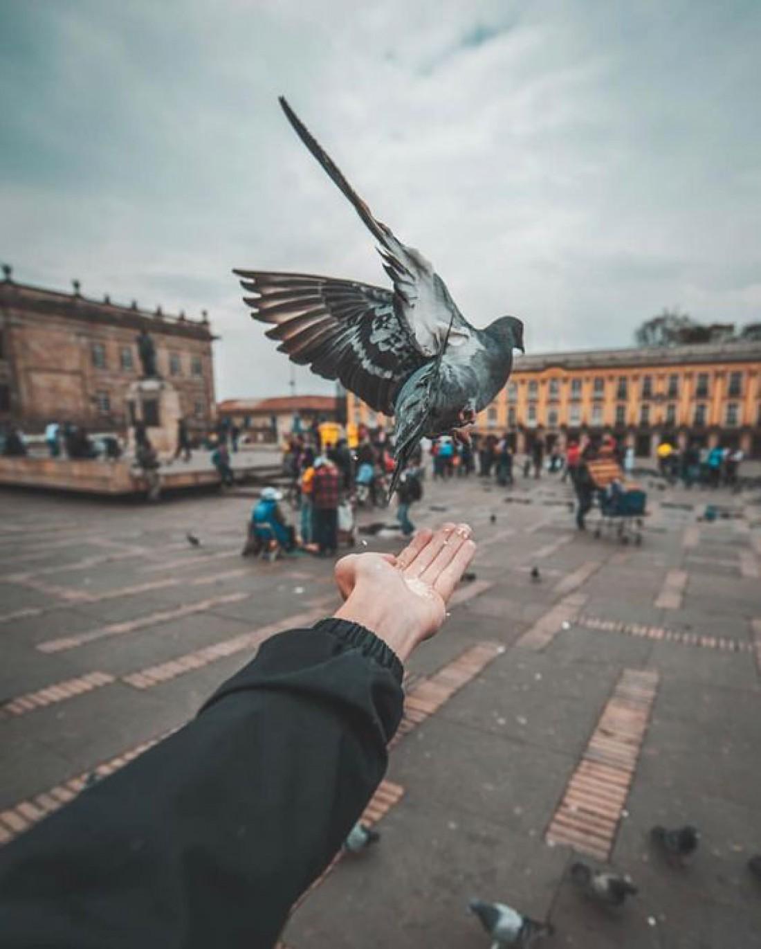 День Святого Духа 2020: заговоры и обряды