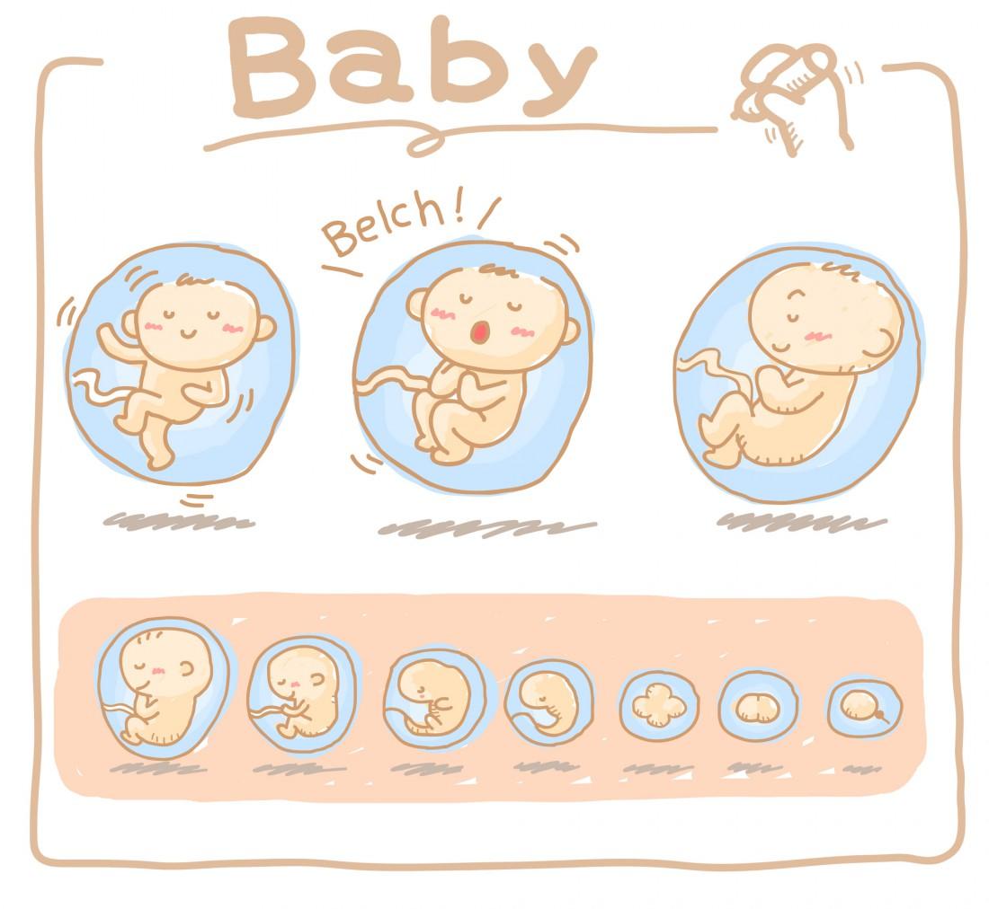 Какие существуют мифы о зачатии ребенка?