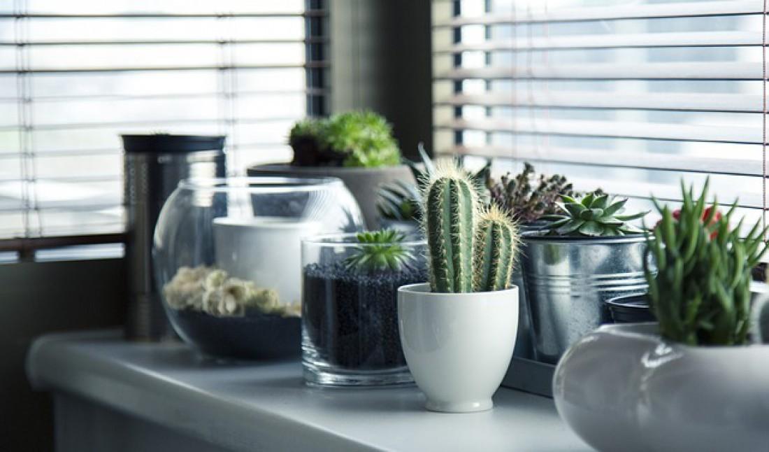 Интерьер кухни - 50 фото дизайна, выбираем