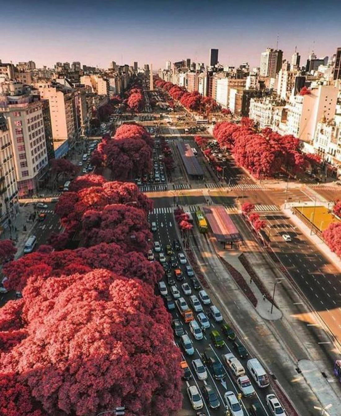 Буэнос-Айрес - столица Аргентины
