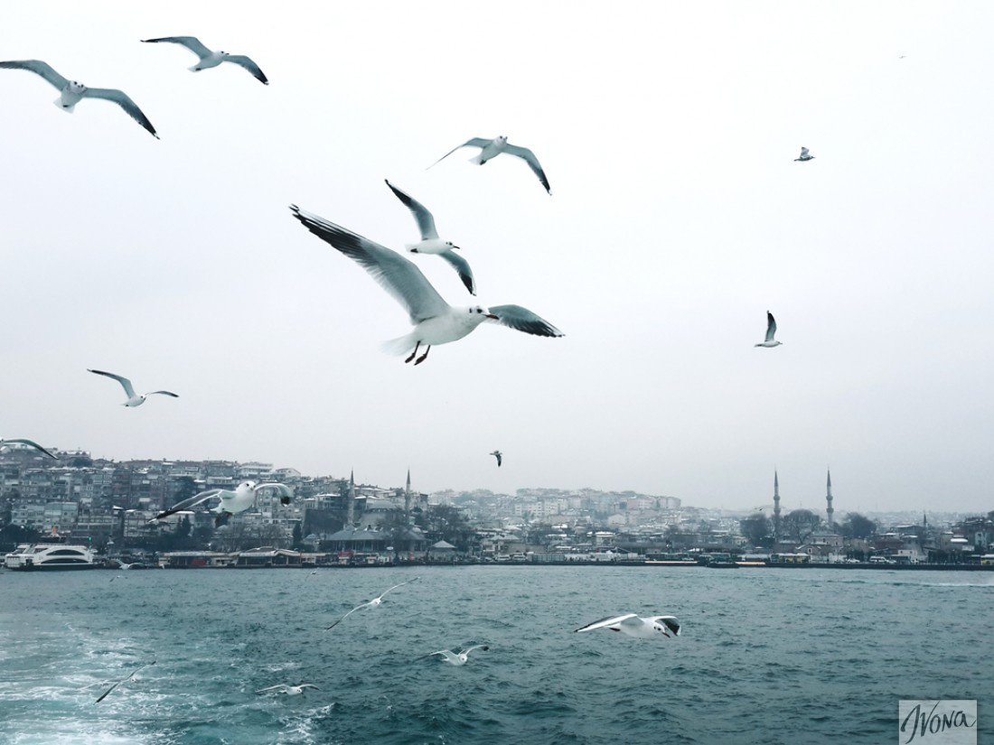 Прогулка на пассажирском пароме по Босфору