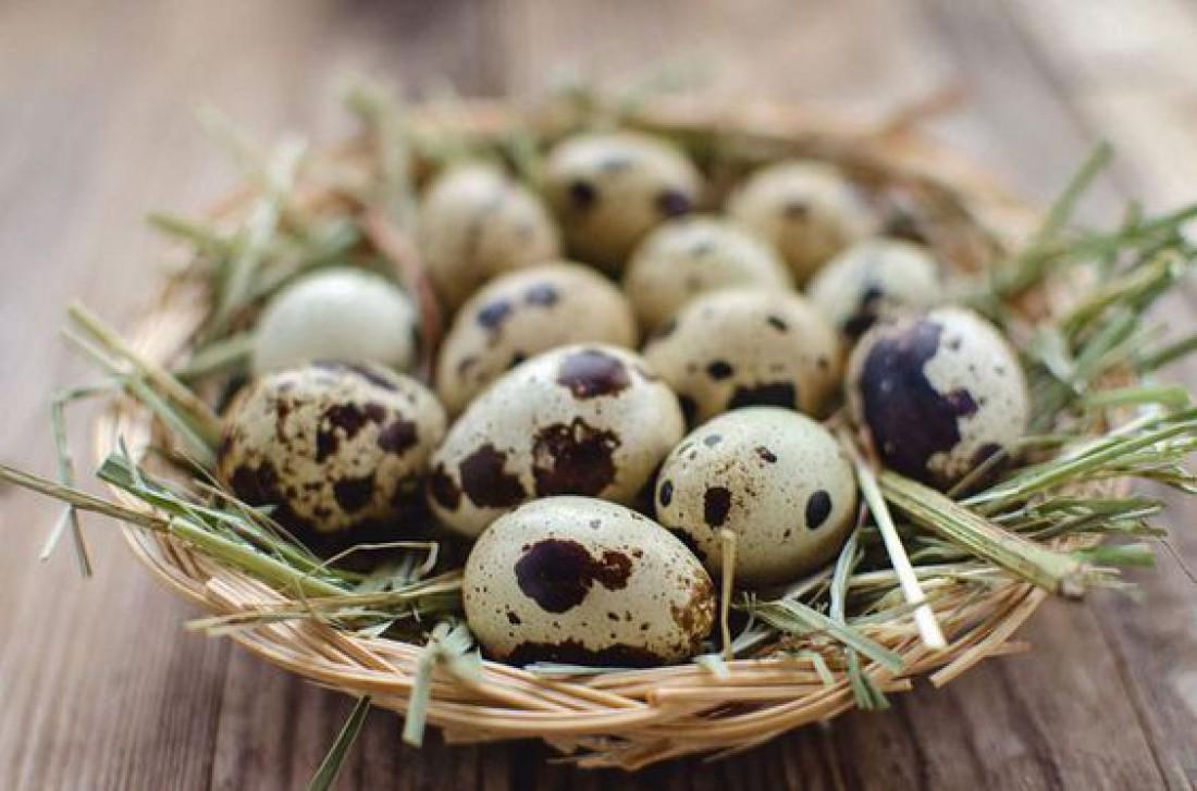 Сколько можно хранить вареные яйца?