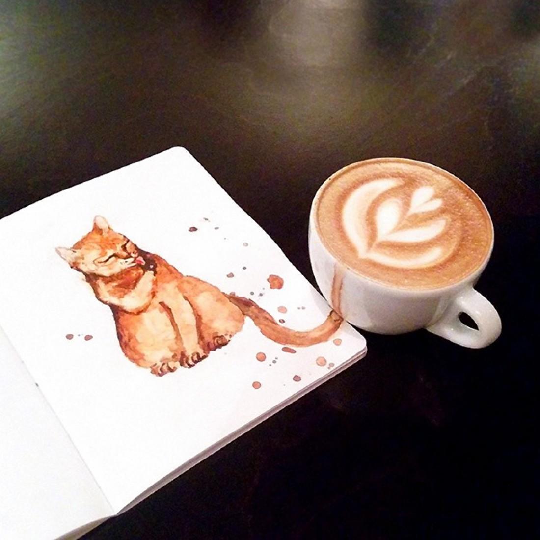 Кот из Latte