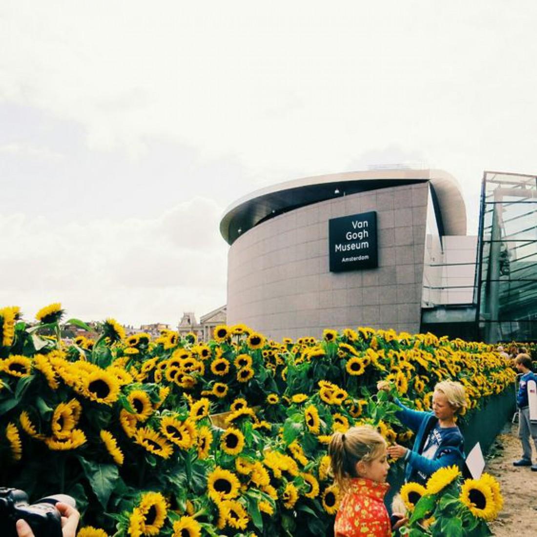 Музей Ван Гога - здесь собрана уникальная коллекция работ художника