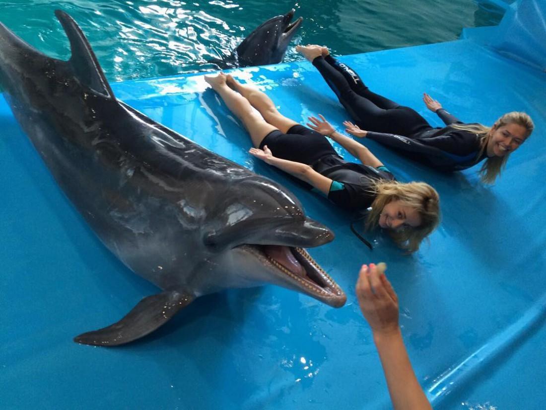 Вера Брежнева в дельфинарии