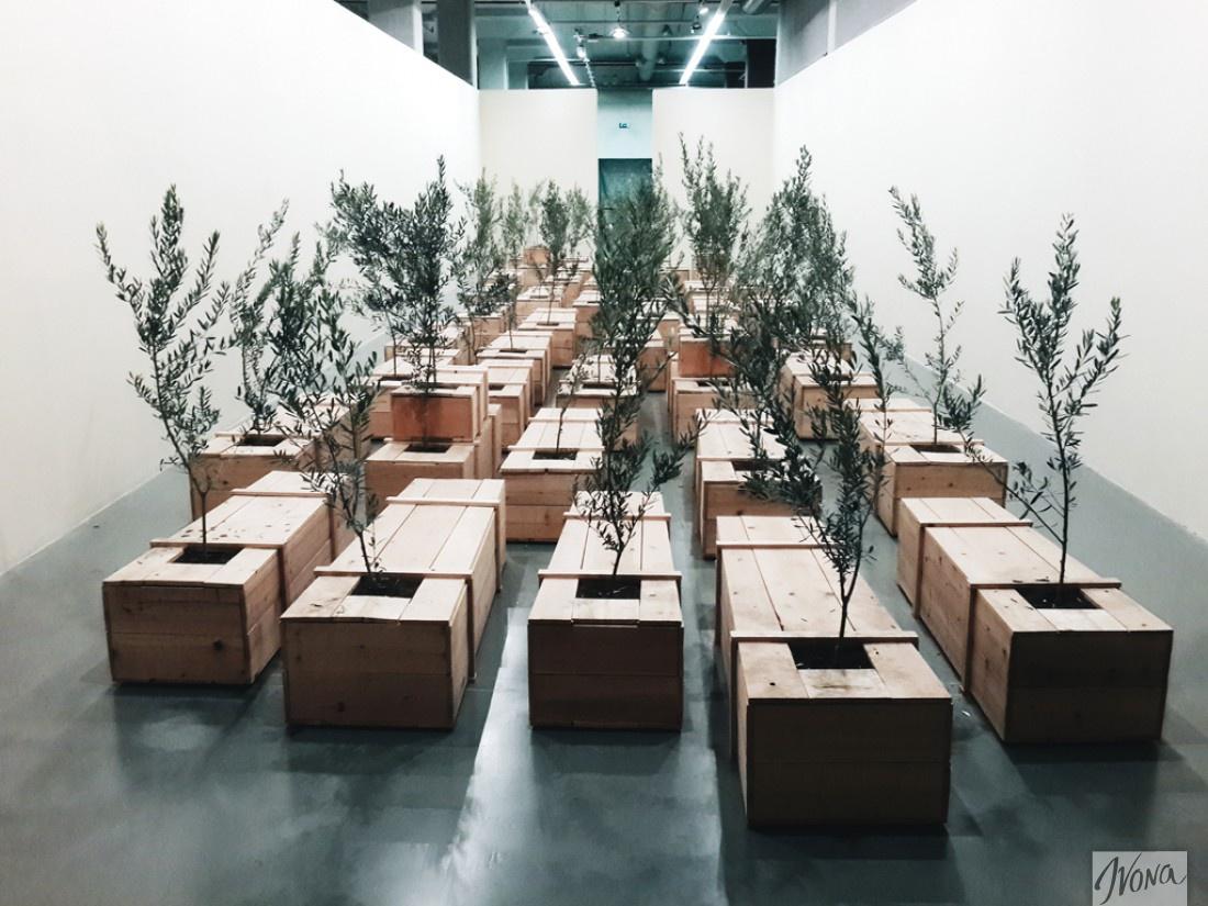 Инсталляция Йоко Оно в Музее современного искусства в Стамбуле