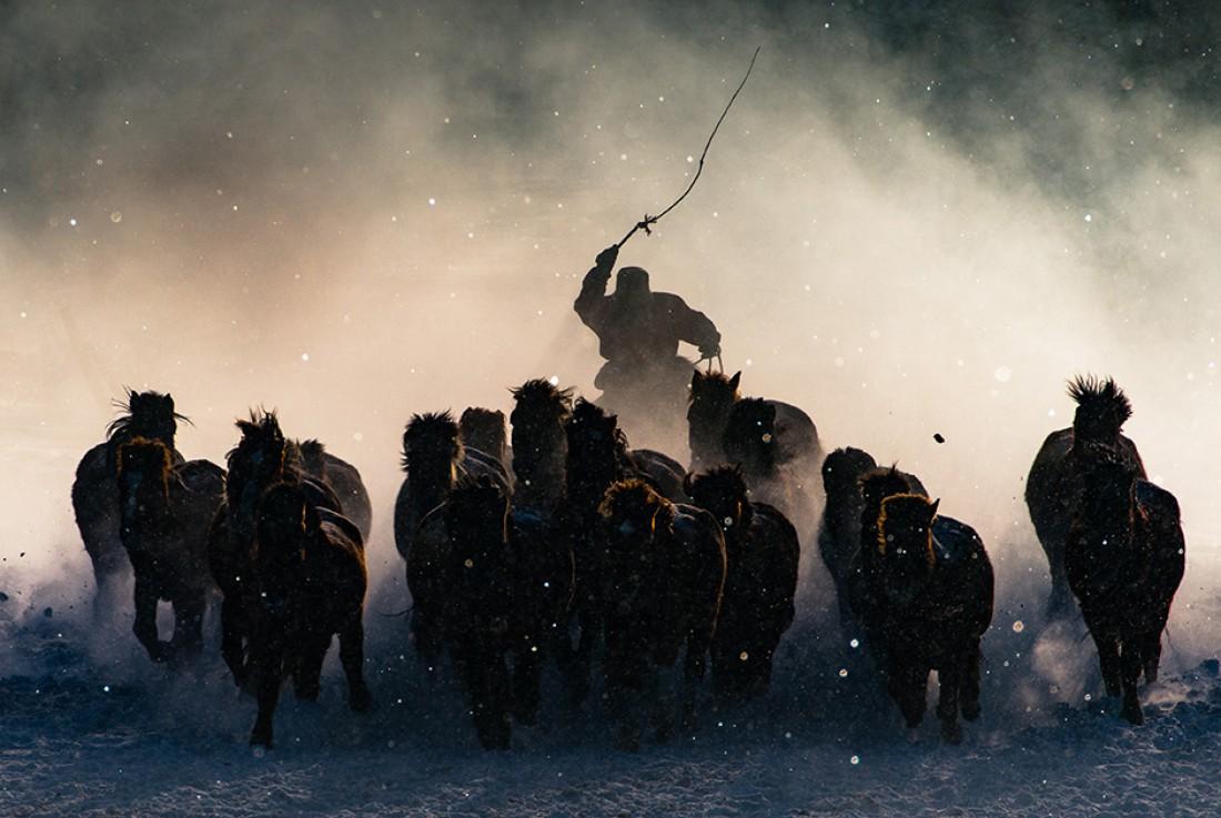 Зимний Всадник, Монголия