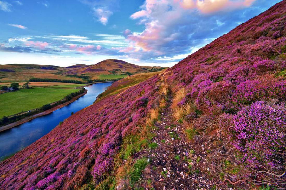 Секс туризм шотландия фото 752-894
