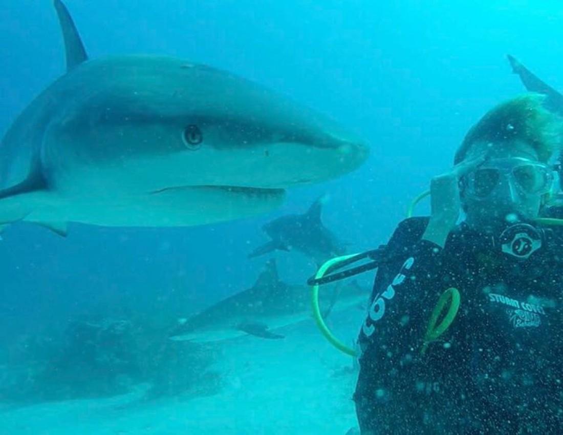 Леся плавает с акулами