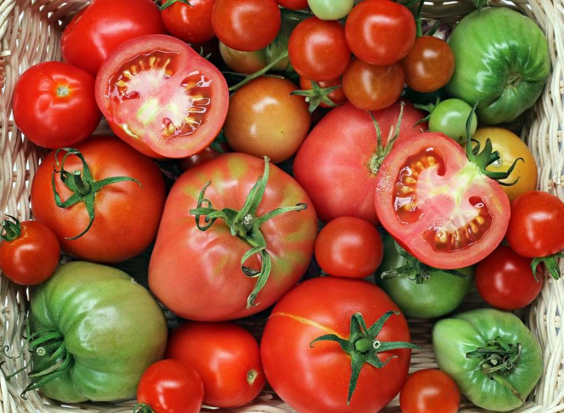 Разные виды помидоров нужно хранить по-разному