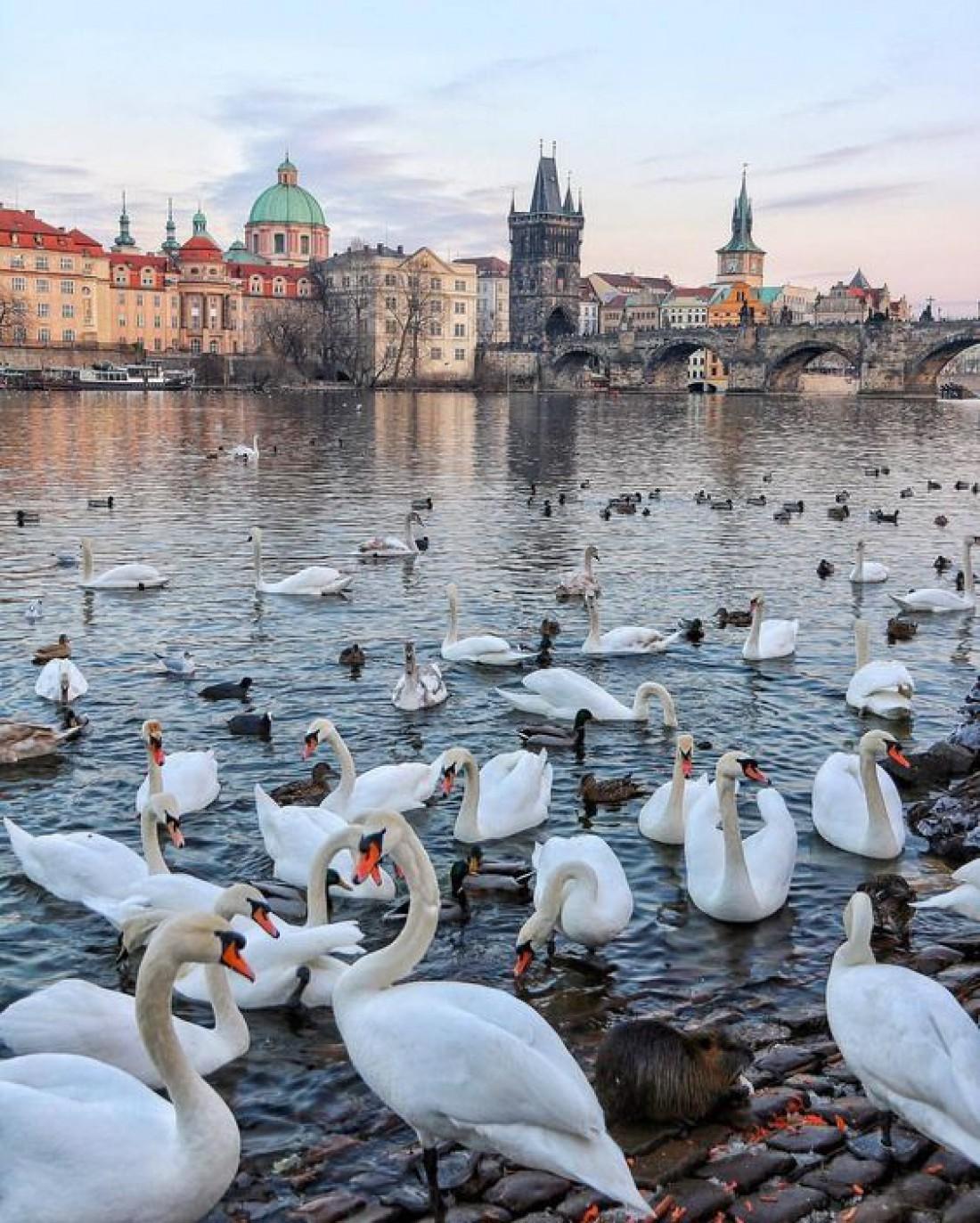 Прибалтийское сокровище: Красивейшие достопримечательности Латвии