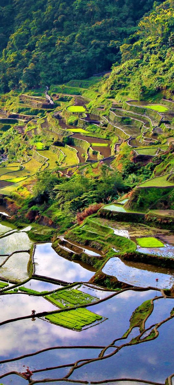 ТОП-5 красивейших достопримечательностей Филиппин