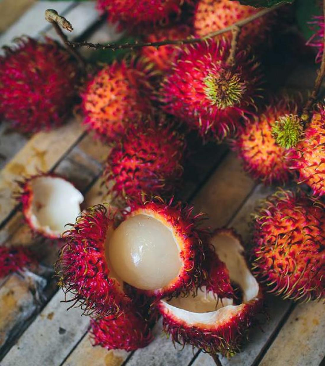 ТОП-5 самых опасных блюд, от которых лучше отказаться в путешествии