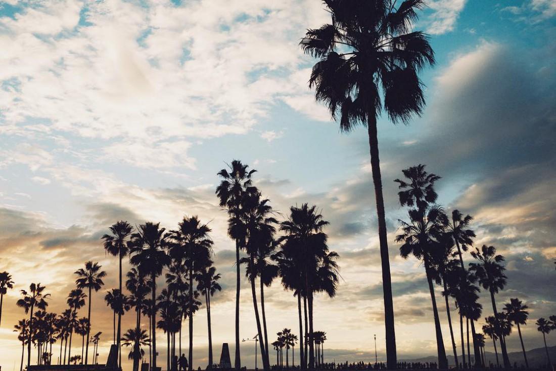 Пляж Venice Beach в Лос-Анджелесе