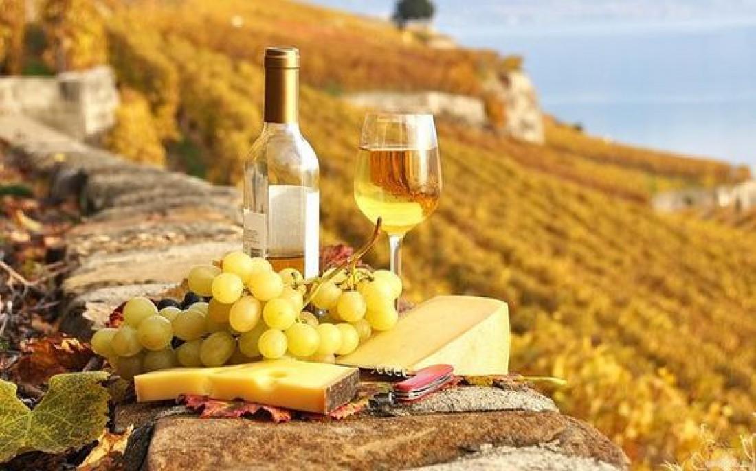 Сыр и вино: основные классические сочетания