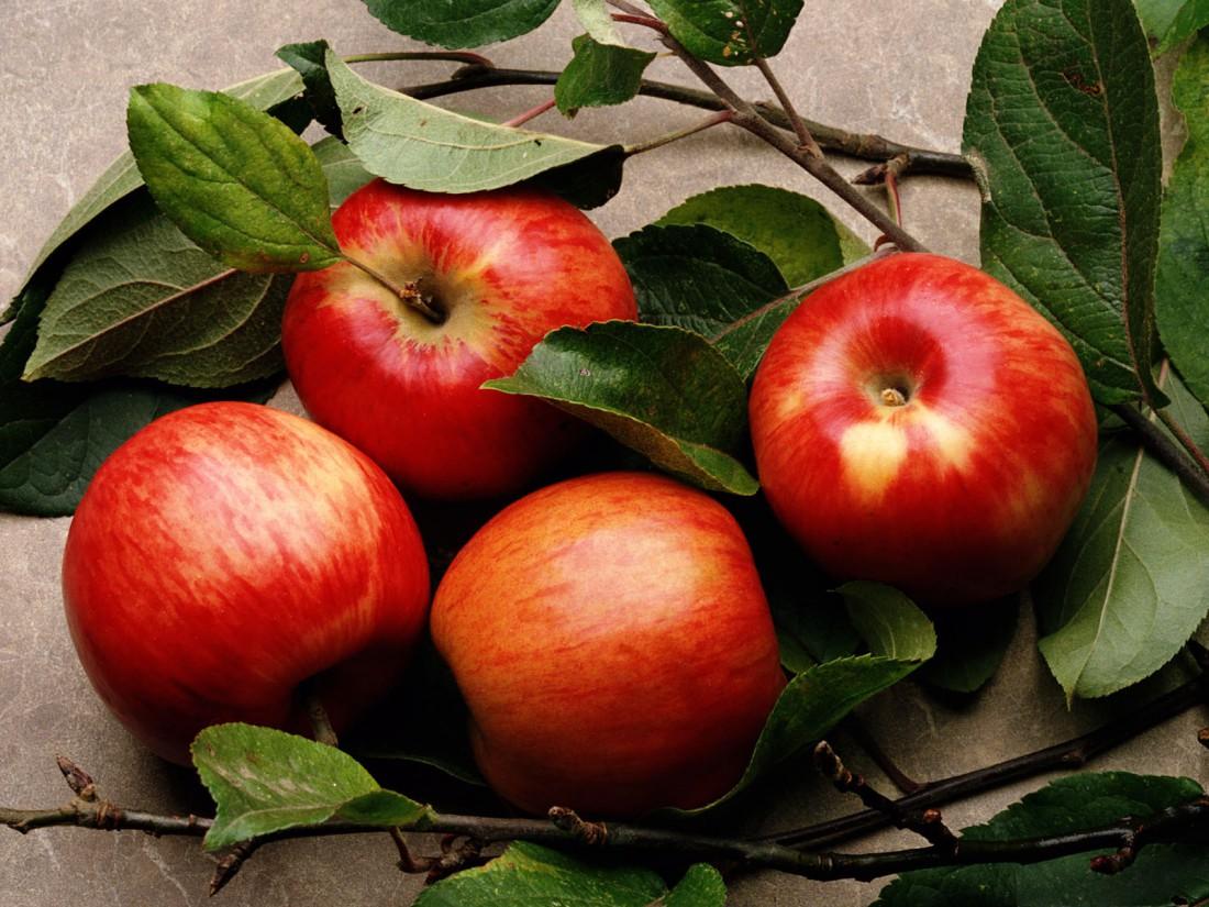 Одно яблоко в день помогает продлить жизнь