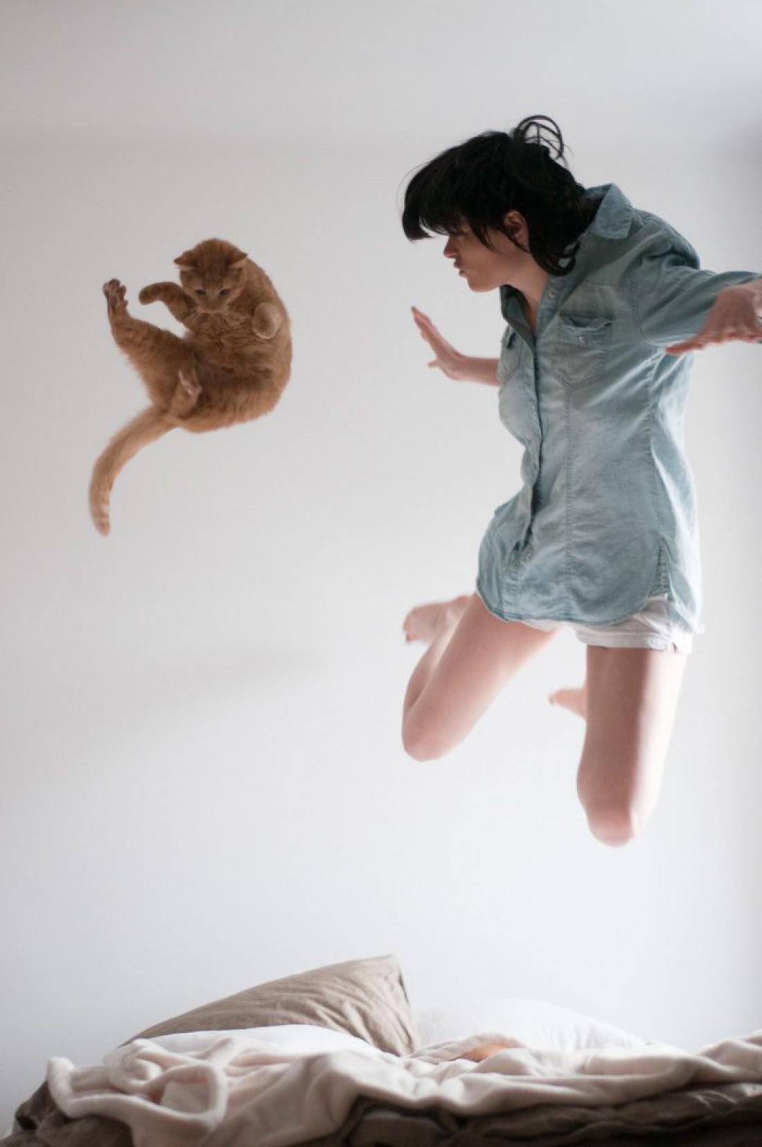 Кот – лучший домашний питомец