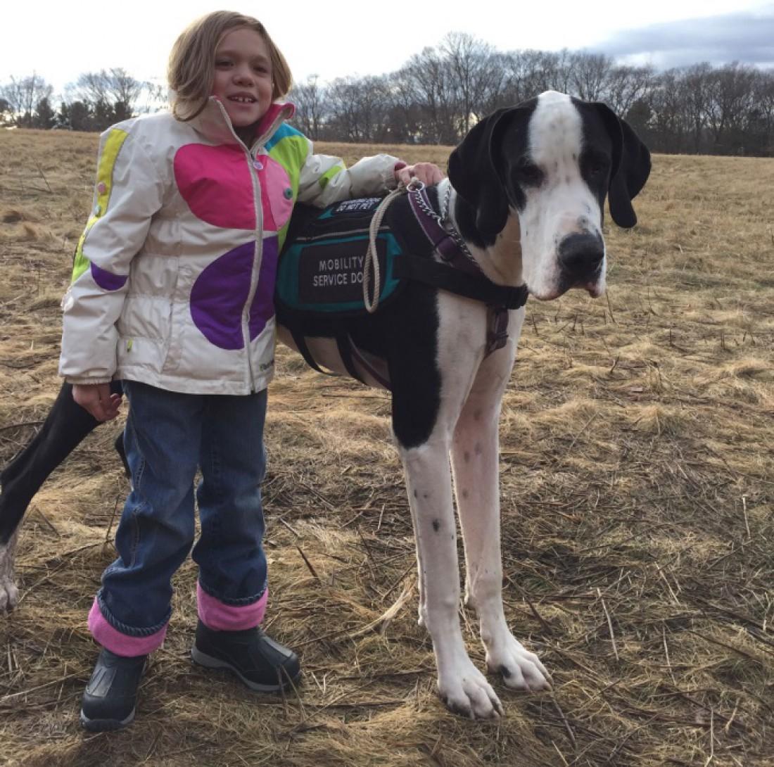 Пес научил девочку ходить