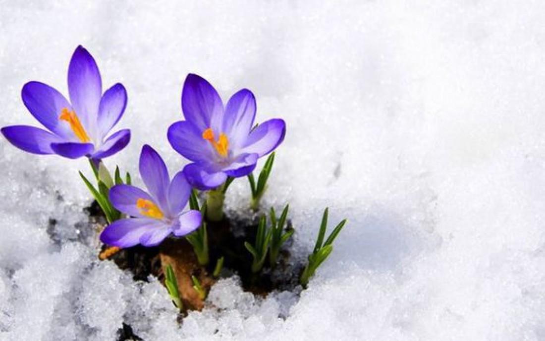 29 февраля: история, приметы, традиции