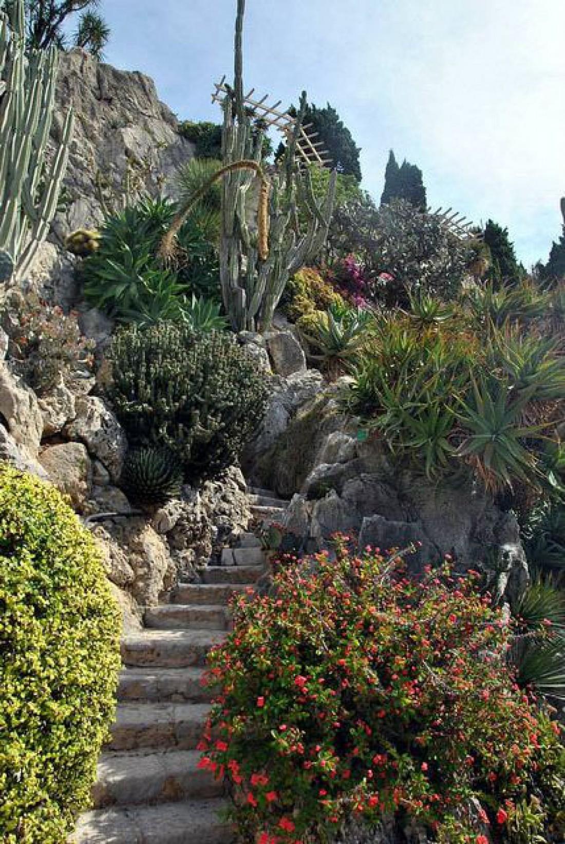 Уникальный сад Экзотик де Монако