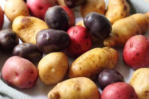 Вопреки распространенному мнению, картофель содержит не так уж много калорий