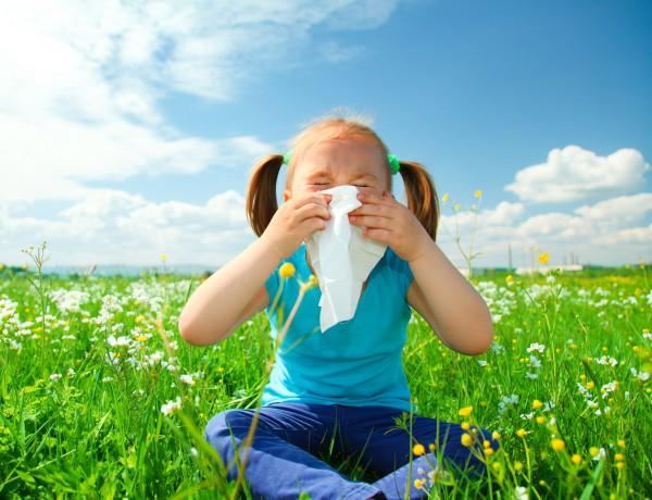 Как появляется аллергия