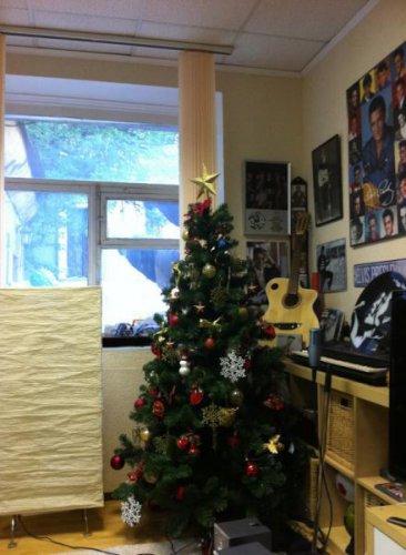 Алексей Воробьев до сих пор не выкинул новогоднюю елку