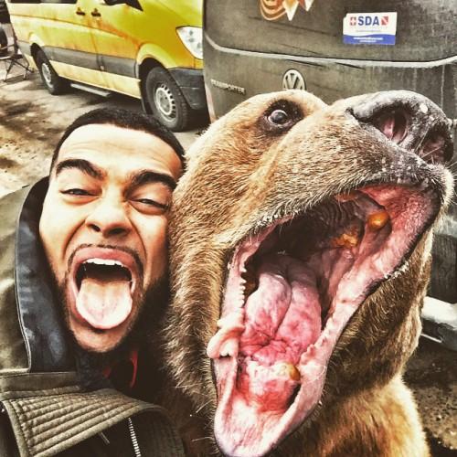 Селфи Тимати с медведем