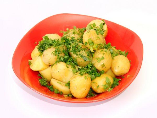 В гарнир из отварного картофеля с укропом и маслом можно добавлять чеснок, различные специи и пряные травы